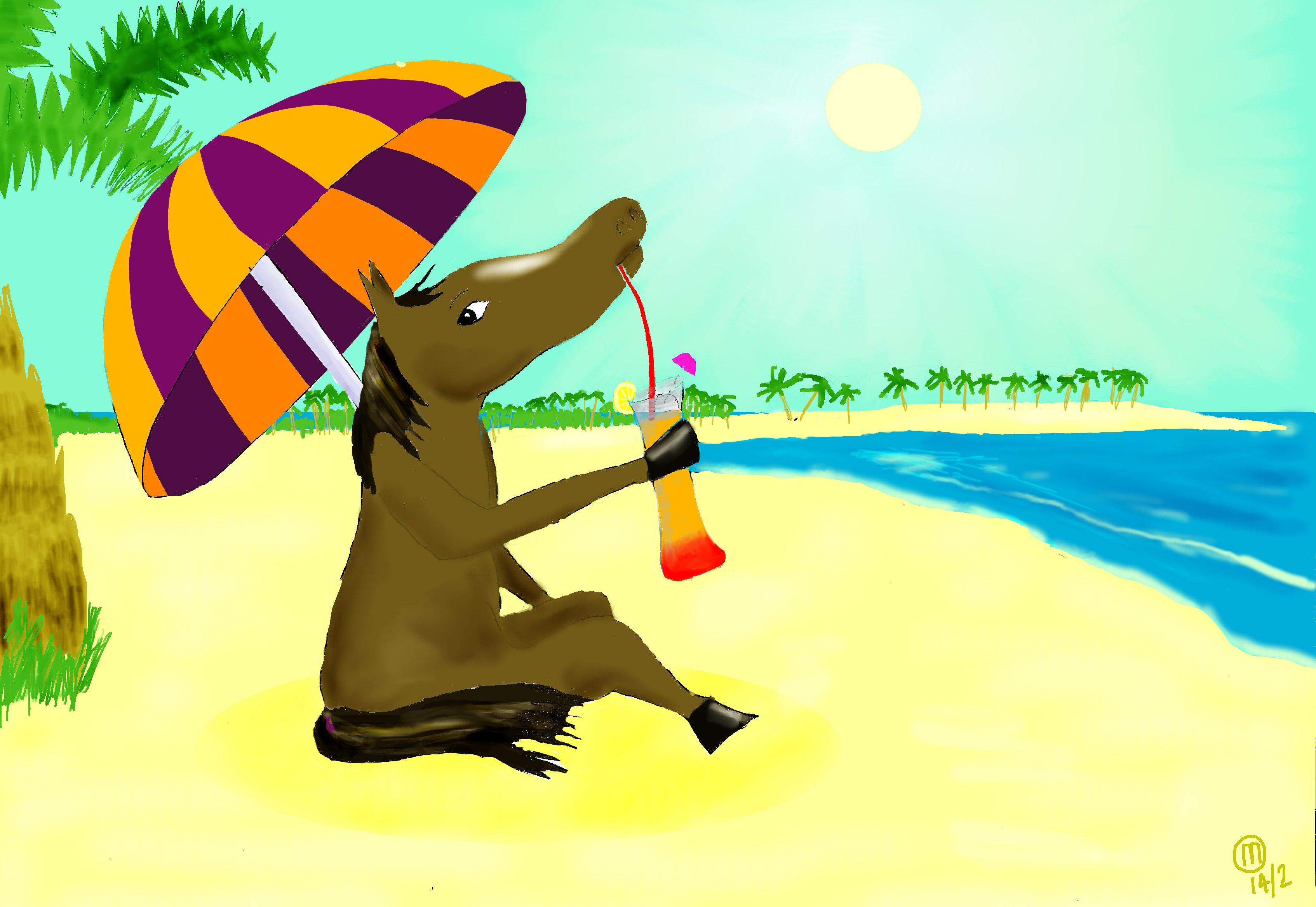 https://mikecampworld.com/blog/wp-content/uploads/2014/04/horse-beach.jpg